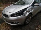 Řidič srazil u Rosovic srnku