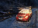 Pojišťovny kvůli sněžení hlásí stovky škod za desítky milionů