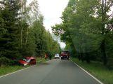 Suzuki skončilo mimo silnici