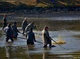 Rybáři a myslivci slavili v Rožmitále pod Třemšínem výlovem Sadoňského rybníka