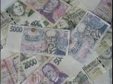 Na projekty prevence kriminality půjde letos 369 tisíc korun