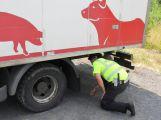 Policisté kontrolovali řidiče, výsledky nejsou příliš dobré