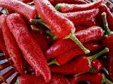 Ovoce a zelenina na příbramských Farmářských trzích má doložitelný původ