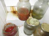 Hmyzí škůdci, zanedbaný úklid, znečištění. To vše odhalila kontrola provozovny v Zaječově.