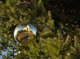 Zakulacený pohled na vánoční atmosféru na náměstí T.G. Masaryka