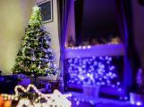 Králem letošních Vánoc je tradičně a neodmyslitelně Ježíšek