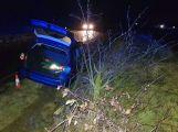 Namol opilý řidič skončil ve stromě