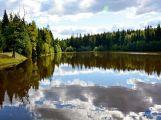 Víte, že za dva roky byla v CHKO Brdy udělána opatření pro přírodu za téměř 7,5 mil. Kč?