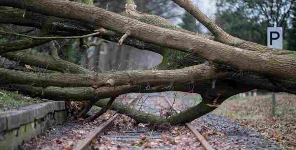 Meteorologové zpřísnili výstrahu před silným větrem. Přijde dřív a bude intenzivnější