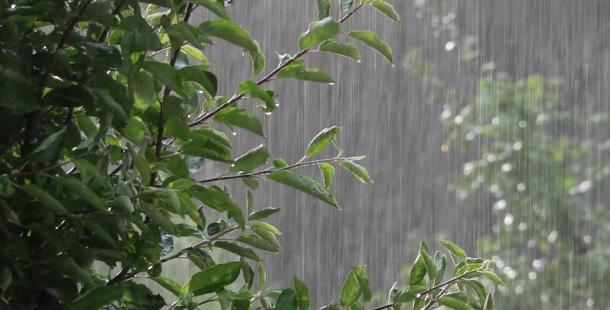 Červenec bude teplotně průměrný, v první polovině bude více pršet
